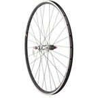 Quality Wheels Peloton Series 3.1 Rear Wheel 700c 28h HED Novembre / HED Belgium / DT Competition All Black