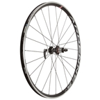 HED Wheels Ardennes + LT 700c Rear Wheel 2x Shimano 10-11 Speed Black